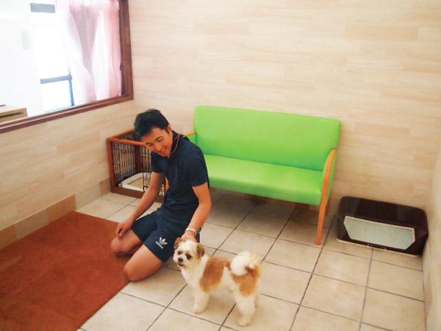 犬との出逢いの間1